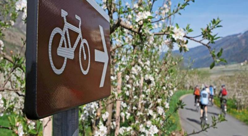 Bike Vinschgau