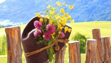 Ab auf die Alm in den Ferien in Südtirol!