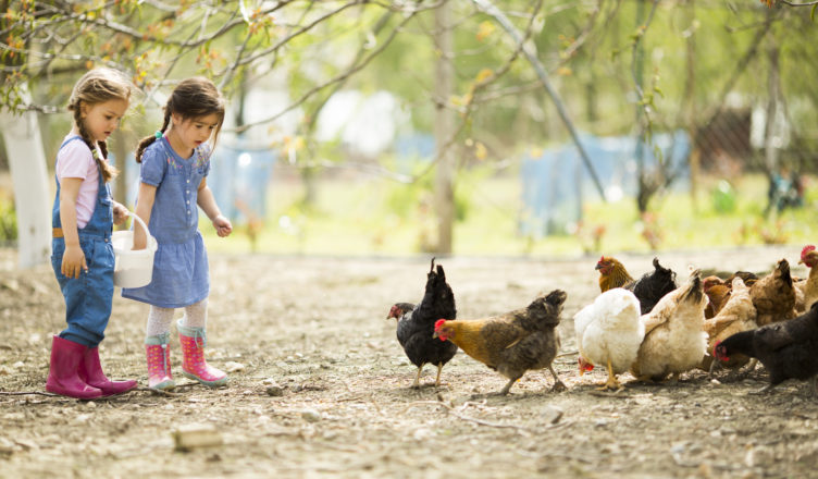 Aktivferien mit Kindern im Feldhof Naturns